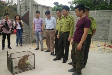 Người dân tự nguyện chuyển giao động vật hoang dã quý hiếm để cứu hộ